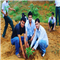 During Plantation in Hasanpur Village